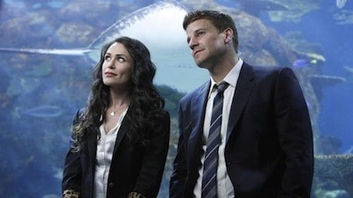 Watch Bones S5E18 in English Online Free | HD