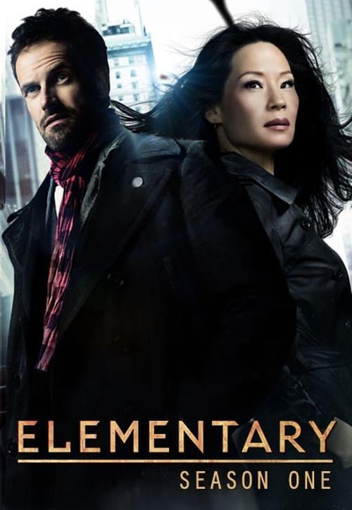 Watch Elementary Season 1 in English Online Free
