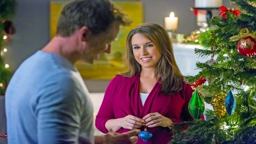 Watch A Wish for Christmas (2016) in English Online Free | 720p BrRip x264