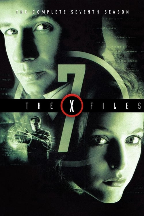 Watch The X-Files Season 7 in English Online Free