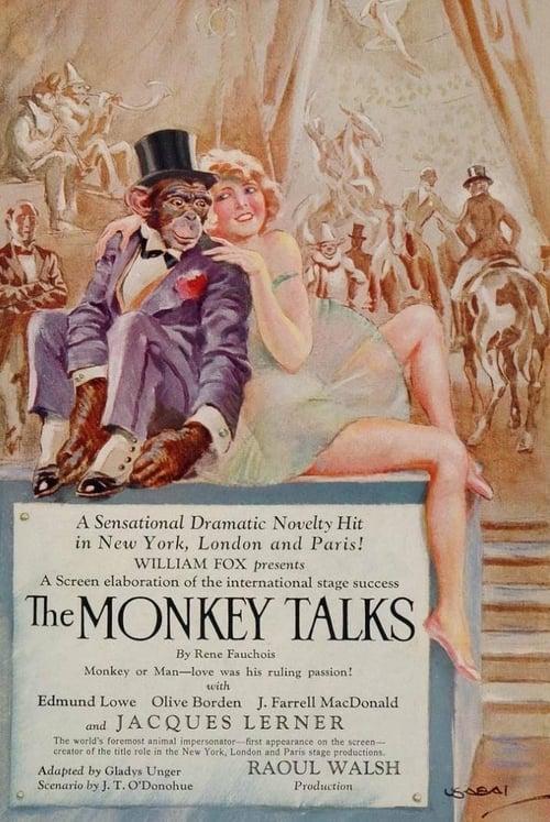 The Monkey Talks