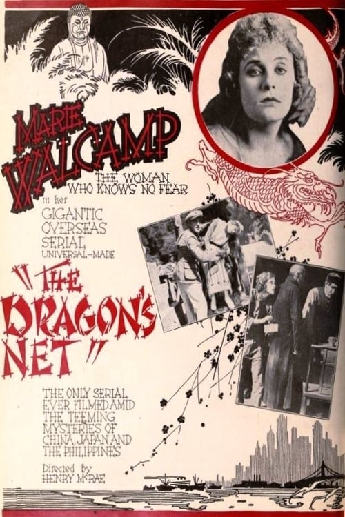 The Dragon's Net