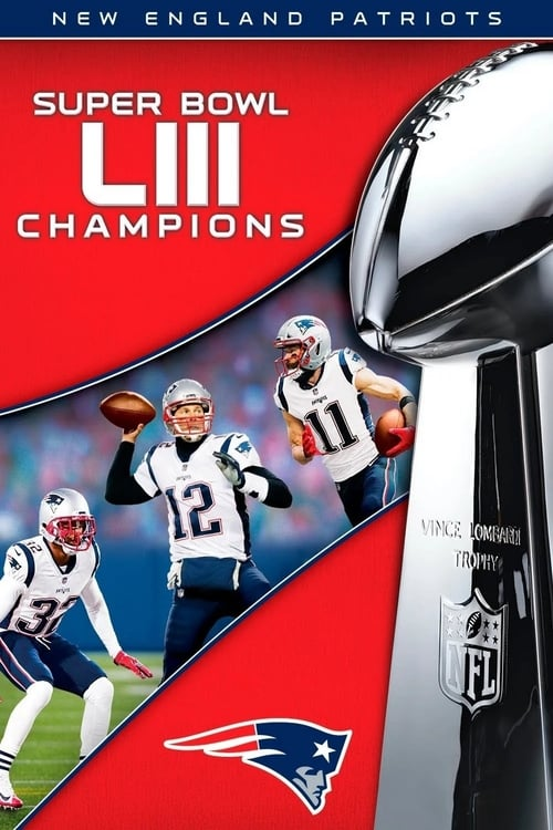 Super Bowl LIII Champions: New England Patriots