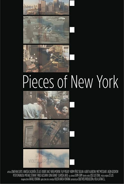 Pieces of New York