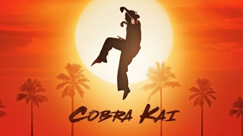 Cobra Kai Season 2 Episode 2 : Back in Black