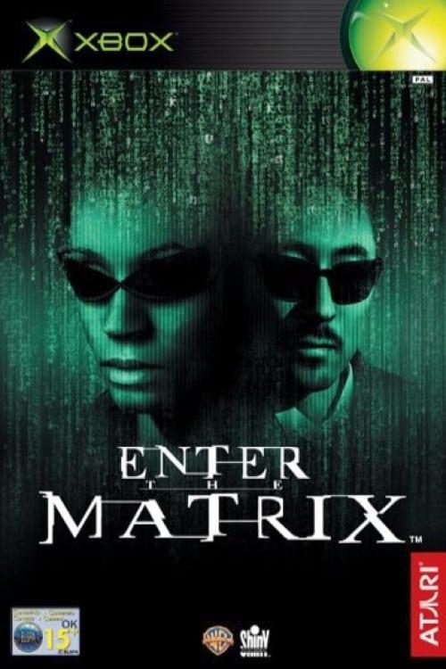 Making 'Enter the Matrix'