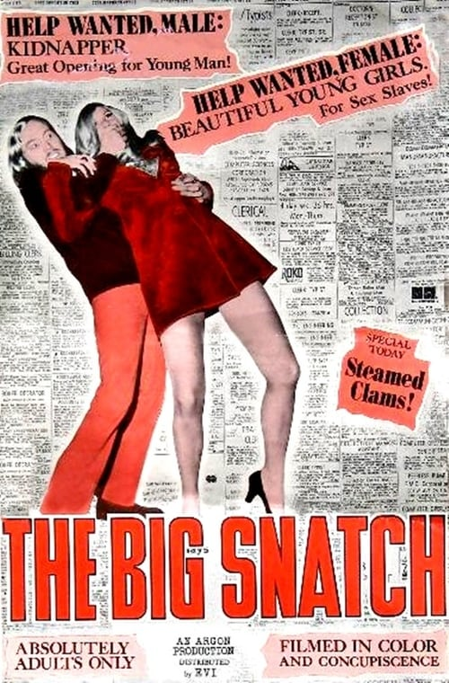 Largescale poster for The Big Snatch