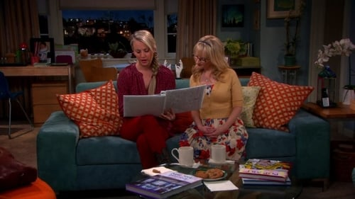 Watch The Big Bang Theory S6E9 in English Online Free | HD