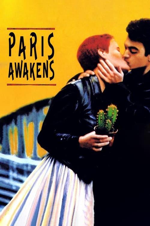 Paris Awakens