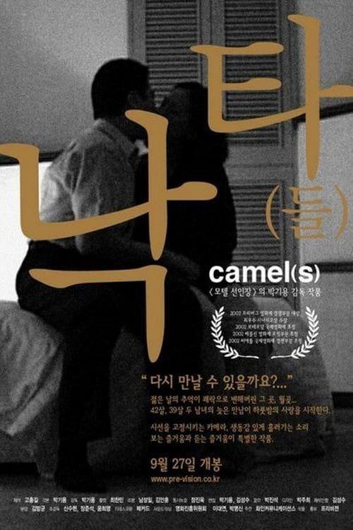 Camel(s)