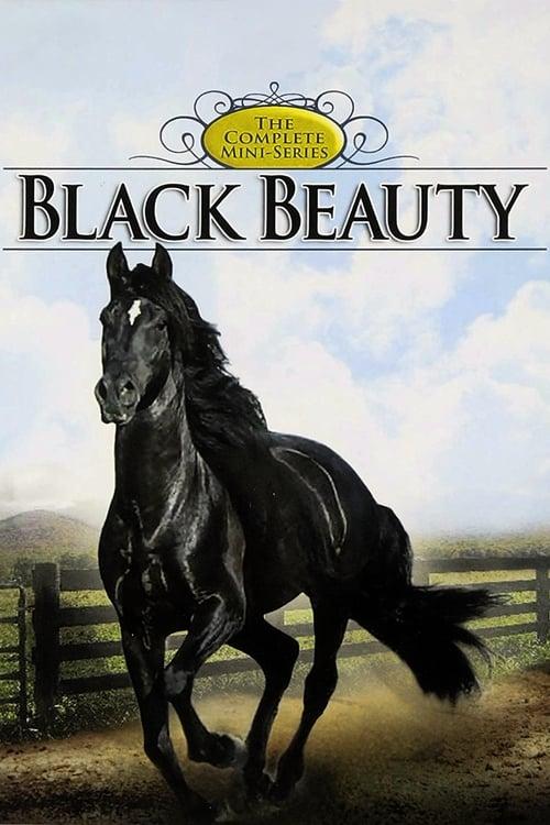 ©31-09-2019 Black Beauty full movie streaming