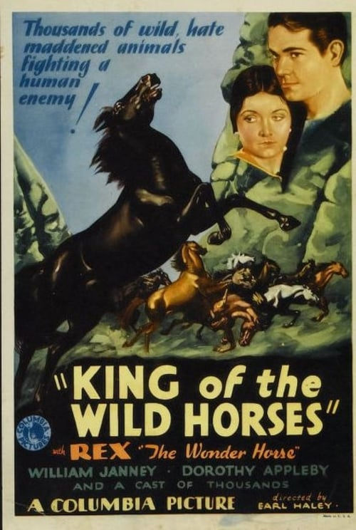 King of the Wild Horses