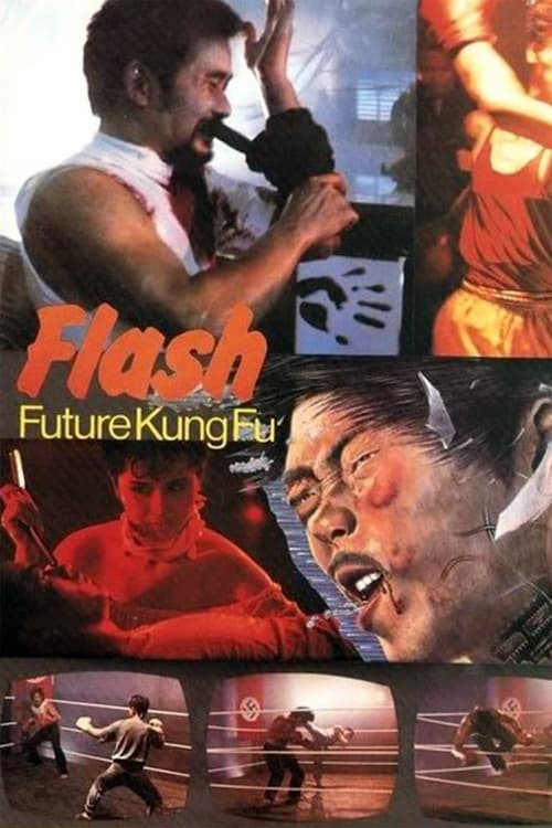 Flash Future Kung Fu