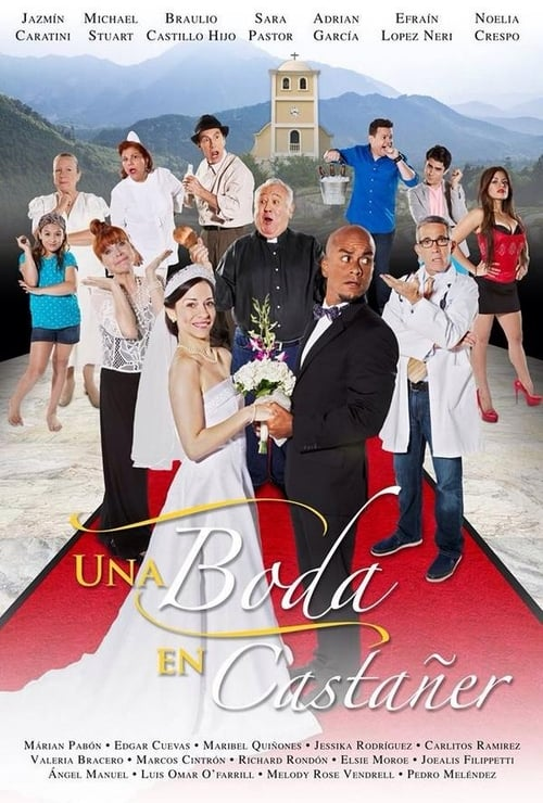 A Wedding in Castañer
