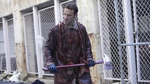 Watch The Walking Dead S1E2 in English Online Free | HD