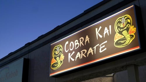 Cobra Kai Season 1