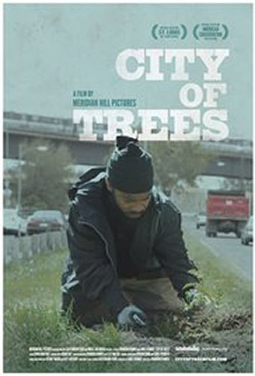 Box art for City of Trees