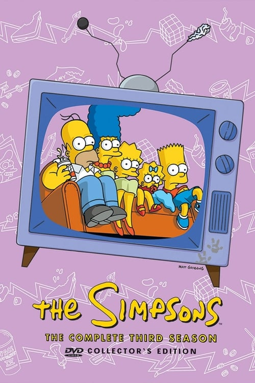 Watch The Simpsons Season 3 in English Online Free