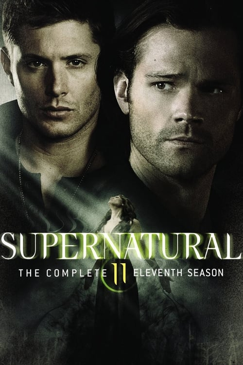 Watch Supernatural Season 11 in English Online Free