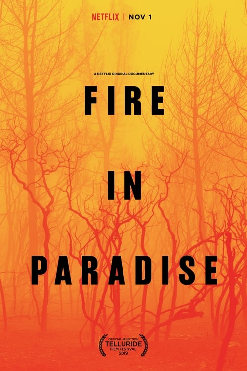 Fire in Paradise stream movies online free