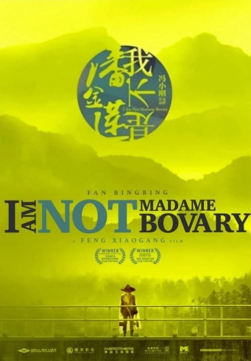 Box art for I Am Not Madame Bovary