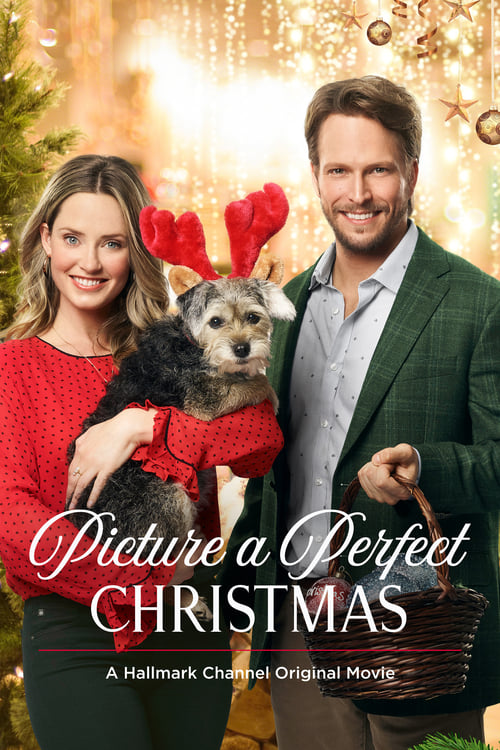 Picture a Perfect Christmas stream movies online free