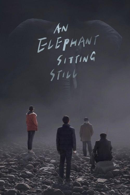 大象席地而坐