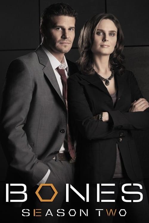 Watch Bones Season 2 Full Movie Download