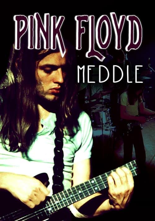 Rock Milestones: Pink Floyd: Meddle