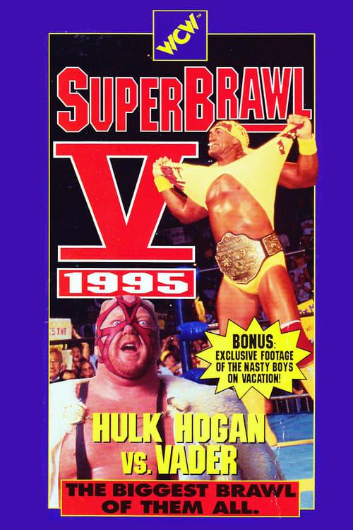 WCW SuperBrawl V