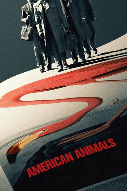 American Animals poster