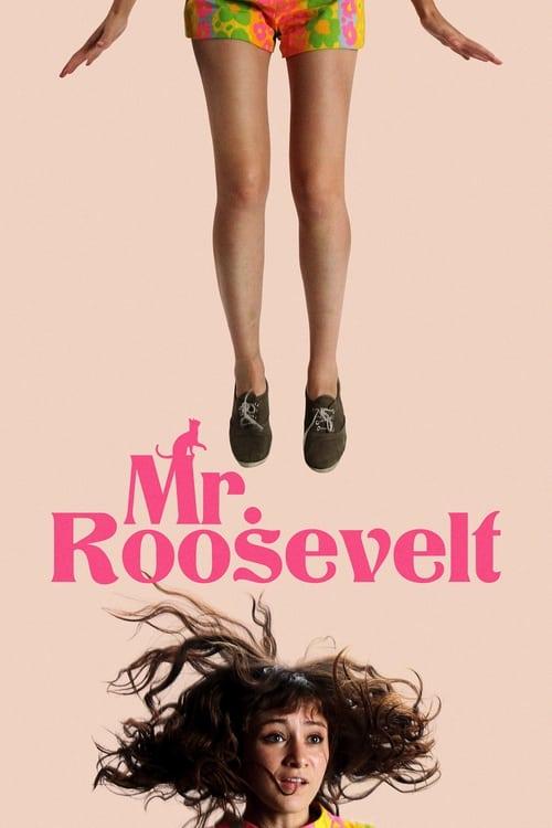 Box art for Mr. Roosevelt