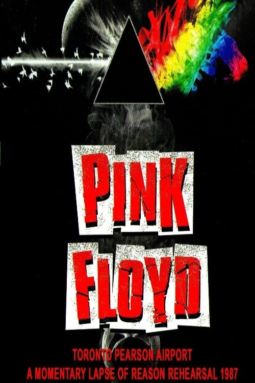 Pink Floyd: A Momentary Lapse of Reason - Rehearsal 1987