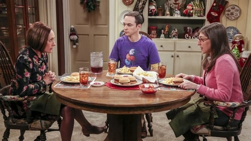 Watch The Big Bang Theory S10E12 in English Online Free | HD