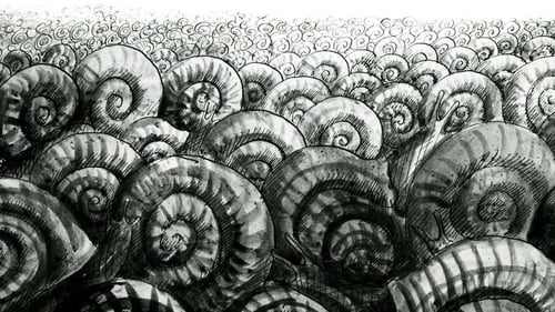The Snails Poster