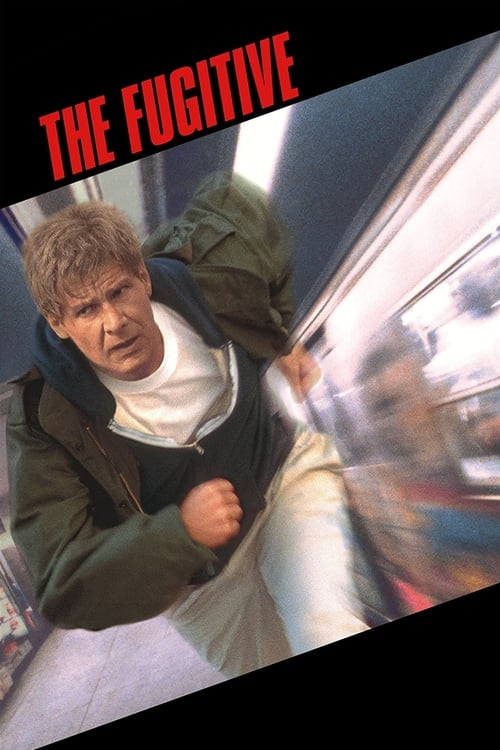 Image The Fugitive 1993