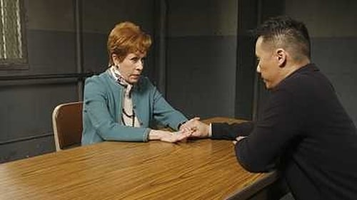 Watch Law & Order: Special Victims Unit S10E16 in English Online Free | HD
