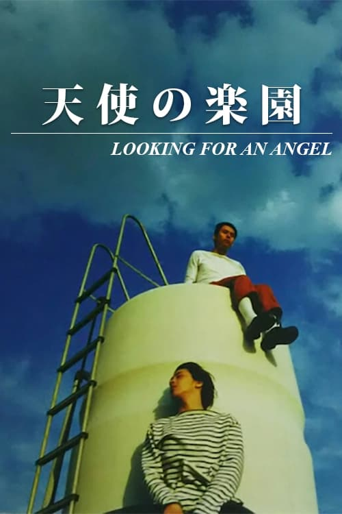 Looking for an Angel