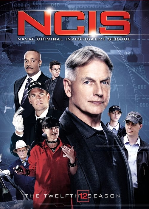Watch NCIS Season 12 in English Online Free