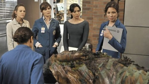 Watch Bones S6E6 in English Online Free | HD