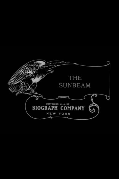 The Sunbeam