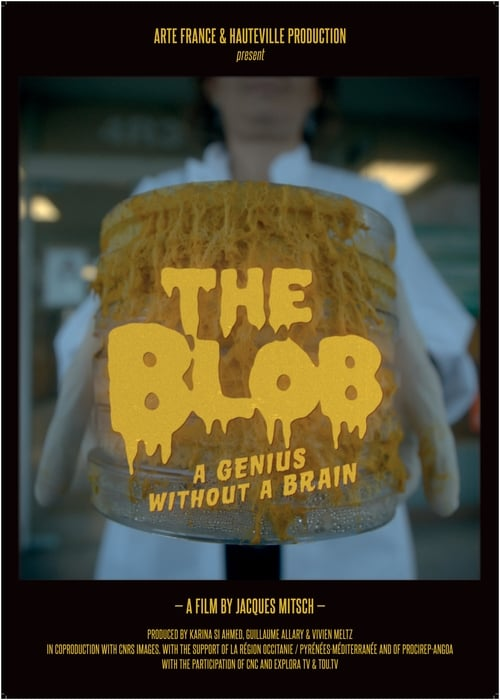 The Blob: A Genius without a Brain