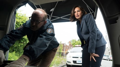 Watch Law & Order: Special Victims Unit S17E2 in English Online Free | HD