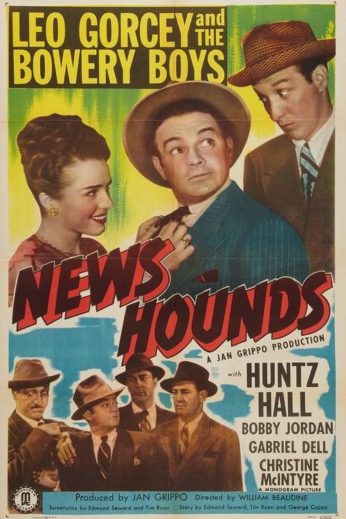 News Hounds