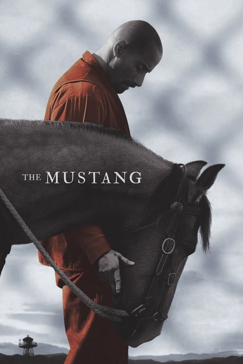 Watch The Mustang (2019) HD Movie Streaming