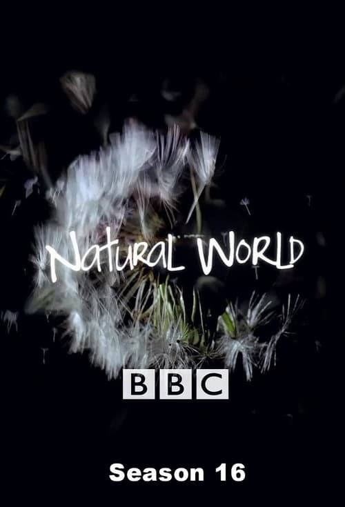 Watch Natural World Season 16 Full Movie Download