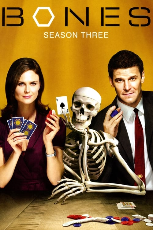 Watch Bones Season 3 in English Online Free