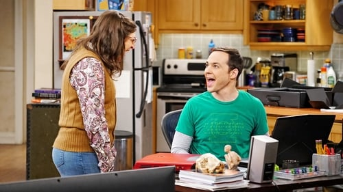 Watch The Big Bang Theory S9E19 in English Online Free | HD
