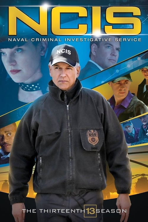 Watch NCIS Season 13 in English Online Free