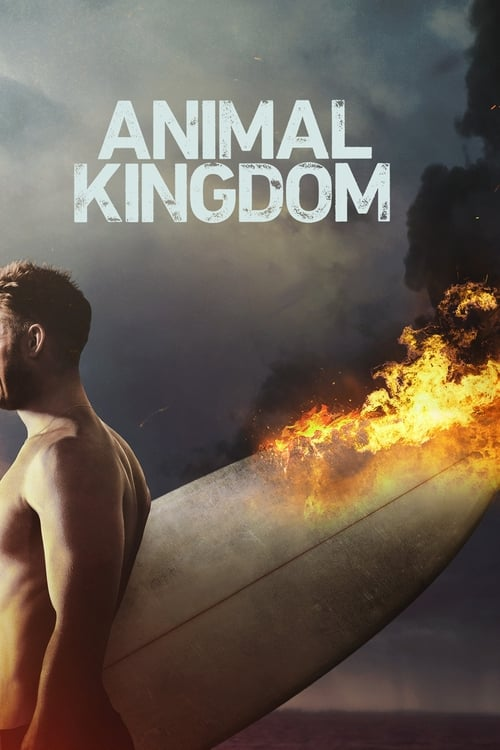 Watch Animal Kingdom (2016) in English Online Free | 720p BrRip x264